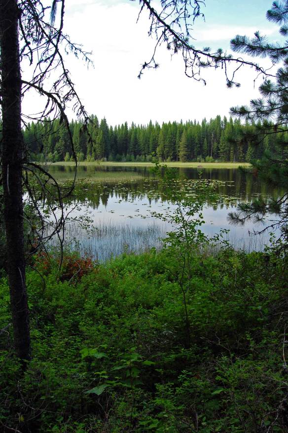 Washington for Plenty of fish spokane