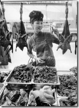 1964 Chinatown ducks